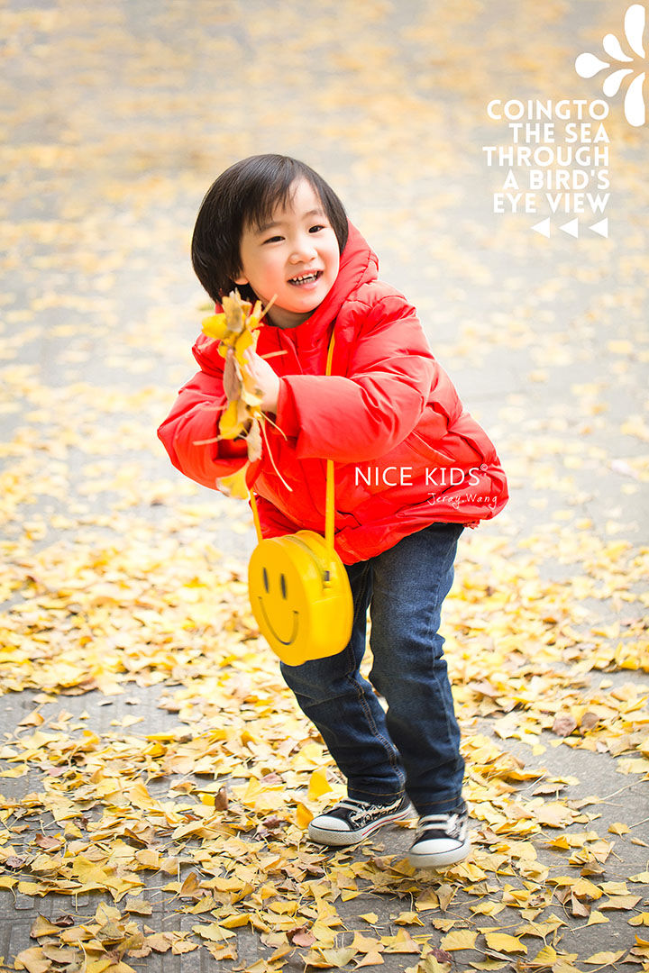 银杏季 – 严晞-Jeray.Wang