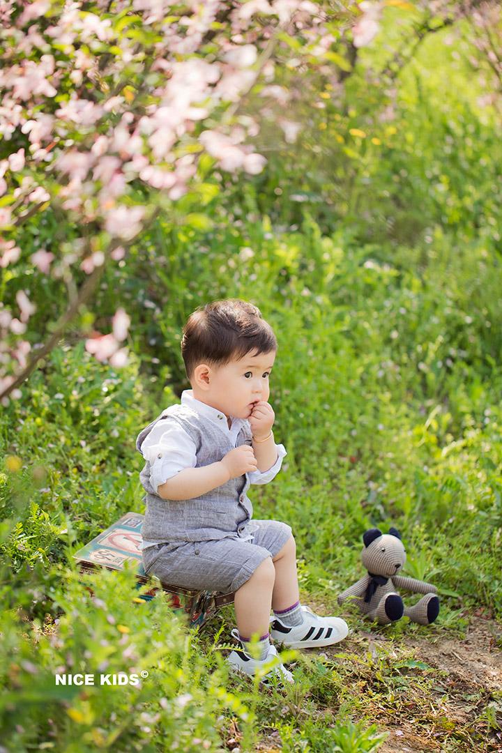 小皮球,放下你的小饼干 - 油菜花季-Jeray.Wang