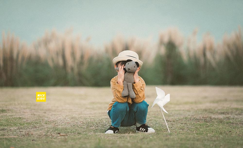 轻芦苇风-Jeray.Wang